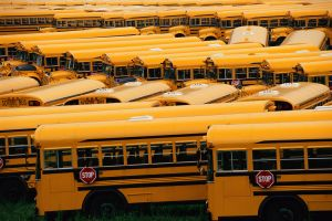 Yard of school buses
