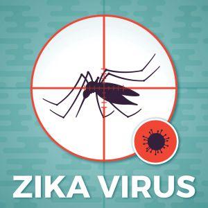 Mosquito Virus Transmission