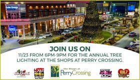 Tree Lighting @ Perry Crossing