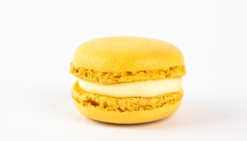 Lemon macaron against white background